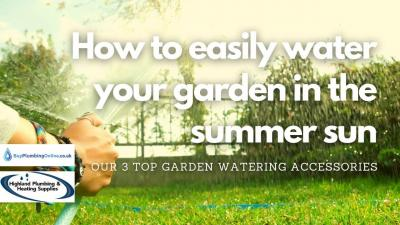 How should you water plants in the sun this summer?